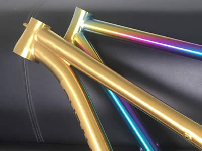 Titan gold and rainbow frames